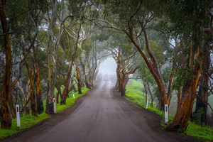 Adelaide Hills, South Australia