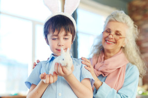 Adorable kid looking at small rabbit with grandmother near by