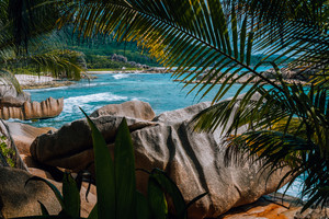 Amazing tropical scenery of Grande l'Anse beach framed with palms on La Digue at Seychelles. Exotic beach with coral sand mix. Real highlight