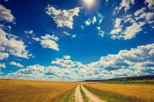 An endless dirt road in a field with a beautiful sky