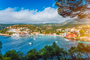 Assos village, Kefalonia. Greece. White yachts and boats staying at anchor in azure water of the bay. pine trees branches in foreground