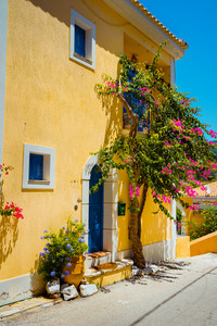 Assos village. Traditional pink colored greek house with bright blue door and windows. Fucsia plant flowers around entrance welcome gate. Kefalonia island, Greece