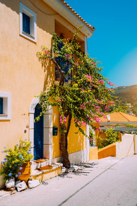 Assos village. Traditional yellow colored greek house with bright blue door and windows. Fucsia plant flowers around entrance welcome gate. Kefalonia island, Greece
