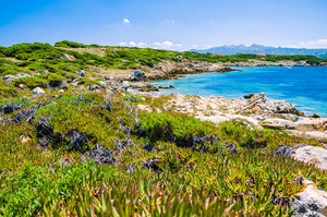 Beautiful costline with granite rocks and amazing azure water on Porto Pollo, Sardinia, Italy