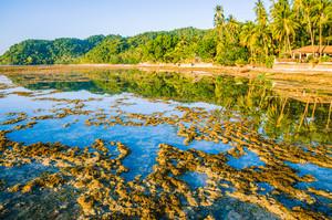Beautiful morning reflection during low tide, El Nido, Palawan, Philippines