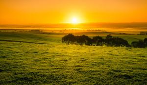 Beautiful Orange Sunrise in the Clare Valley