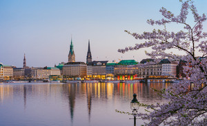 Beautiful panoramic view of Alster river and Hamburg town hall - Rathaus at spring earning evening during golden hour. Cherry blossom tree in foreground