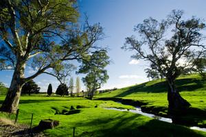 Beautiful Rural Scene