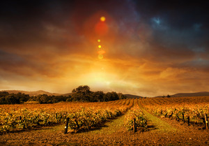 Beautiful sunset over Barossa Valley sunset in Autumn