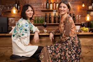 Beautiful young woman celebrating their friendship over a glass of wine in a cozy pub at the counter. Beautiful dresses