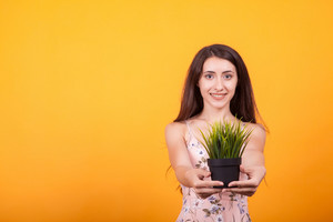 Beautiful young woman holding pot with plant in studio over yellow background.