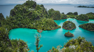 Blue bay with Pianemo island overgrown with jungle plants, surrounded by shallow blue ocean lagoon. View from the top viewpoint. Raja Ampat, West Papua, Indonesia