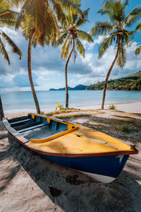 Boat under coconut palm trees on sunny day on shore of tropical beach, Seychelles islands