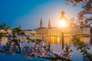Burn lantern between branches of cherry blossom flowers on calm and beautiful Alster river and Hamburg town hall - Rathaus at spring on evening twilight just after golden hour.