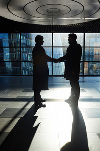 Business partners from financial corporation congratulating one another on new deal
