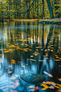 Calm, quiet mood in the autumn park. Forest lake, colorful autumn long exposure. Leaves in water surface.