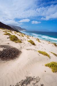 Cape Verde. Desolate landscape of sand dunes and desert plants of atlantic coastline with ocean waves. Baia Das Gatas, North of Calhau, Sao Vicente Island