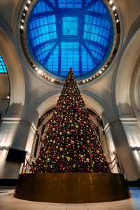 Christmas tree under the glass dome at railway station. Beautiful Interior of shopping centre in Dresden Hauptbahnhof. Christmas holidays