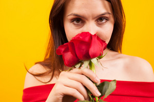 Close up portrait of beautiful smelling a red rose and looking at the camera over yellow background. Happy woman. Attractive woman.