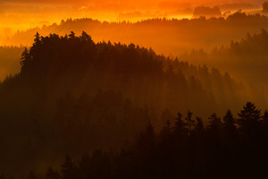 Cold misty foggy morning in a fall valley of Bohemian Switzerland park. Hills with fog, landscape of Czech Republic, sun beam in the landscape Ceske Svacarsko