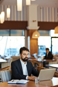 Confident dark-haired manager preparing financial reporting with help of laptop while sitting in spacious restaurant, waist-up portrait