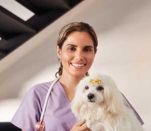 Confident young hispanic woman at work as veterinary, happy vet playing with dog during house call. Animal doctor visiting sick pet at home, smiling and loking at camera