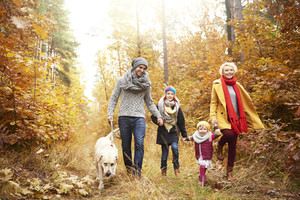 Family of four people walking a dog in forest