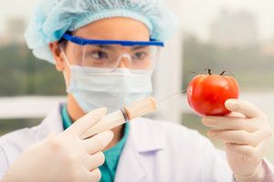 Female chemist injecting ripe tomato