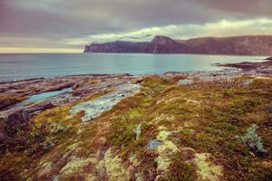 Fjord, rocky beach at magic sunset, wild nature Norway. Senja island. Beautiful bay.