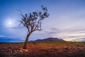 Flinders Ranges in outback Australia