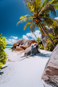 Footpath to tropical beach Anse Source d'Argent between granite rocks and palm trees, La Digue Island, Seychelles