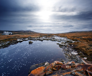 Gorgeous winter scene in the Falkland Islands