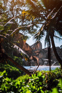 Granite rocks and lush exotic vegetation at a tropical beach on La Digue, Seychelles. Blurred foreground