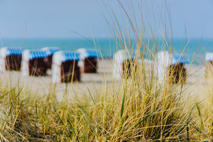 Grass on Travemuende beach. Blurred chairs on sandy beach in background, Luebeck Bay, Germany