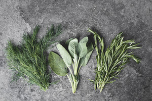 Green and fresh herbs in the kitchen