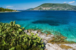 Group of cactus plants in front of crystal clear transparent blue turquoise teal Mediterranean sea. Fiskardo town, Kefalonia, Ionian islands, Greece