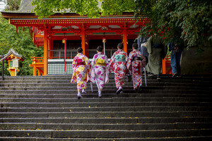 group of japanese woman wearing tradition kimono clothes
