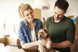 Happy couple putting dog into box