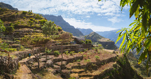 Hiker with camera among agriculture terraces nestled into the slopes of gorgeous mountains. Trekkingtrail Corda Coculli Santo Antao Cape Verde