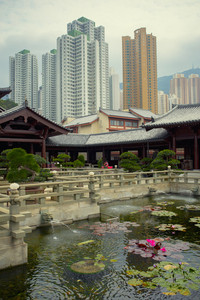 hongkong china - march17,2019 : beautiful tropical lotus pool and chinese cultural pavilion in nan lian garden against vertical skyscraper in heart of hongkong city