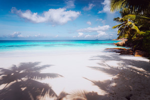 Idyllic perfect tropical dream beach. Powdery white sand, crystal-clear water, summertime vacation Seychelles