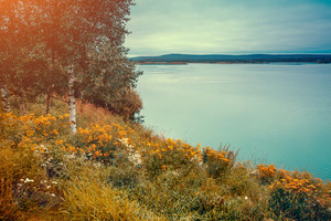 Lakeshore in the autumn morning. Beautiful idyllic autumn nature. Rovaniemi, nature  Finland.