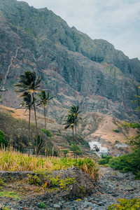 Landscape with palm trees against huge mountains in the Paul Valley, island of Santo Antao, Cape Verde