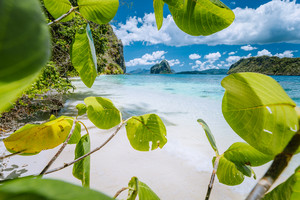 Leaves framed shot of bizarre amazing Pinagbuyutan island made beach on Lagen Island. El Nido, Palawan, Philippines