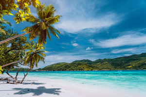 Luxury vacation on tropical island. Paradise beach with white sand and palm trees. Long distance travel tourism getaway concept