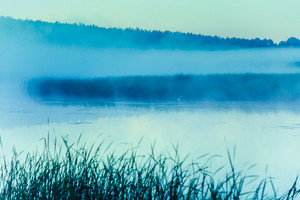 Magical sunrise over the lake. Misty morning, rural landscape, wilderness, mystical feeling