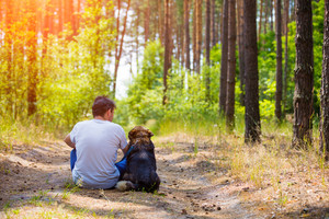 Man sitting with a dog on dirt road in pine forest in summer back to camera