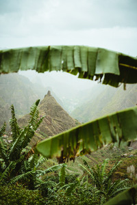 Mountain peak of Xo-xo valley visible throught the banana leaves frame down the valley. One of the best trekking route on Santo Antao island, Cape Verde. Cloudy weather