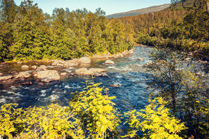 Mountain river in autumn. Norway