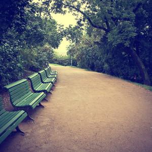 nature vintage background